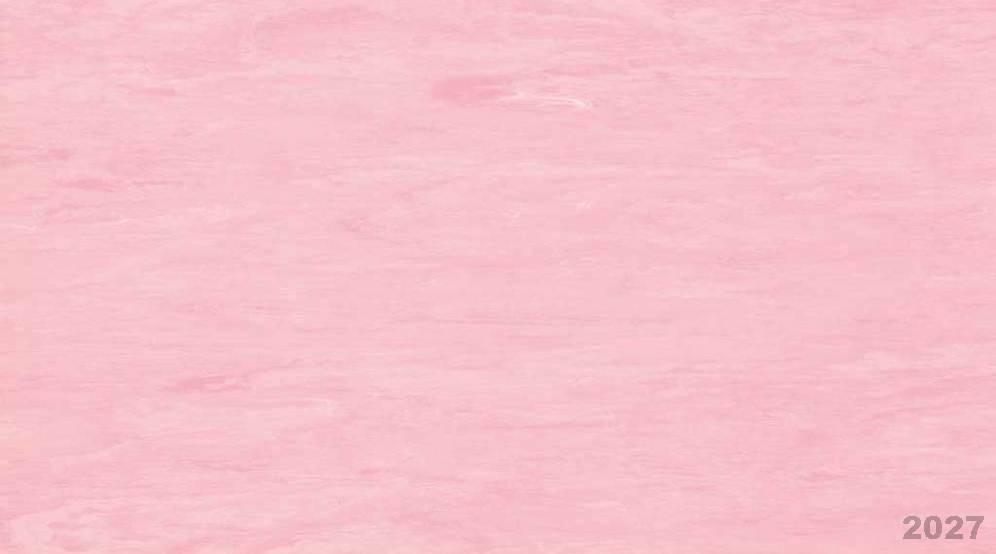 2027 Pink