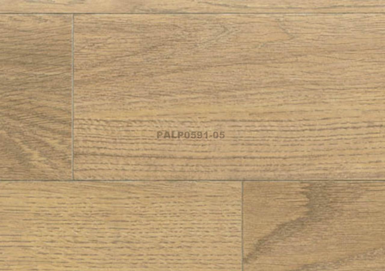 PALP0591-05