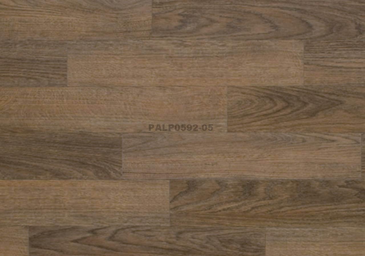 PALP0592-05