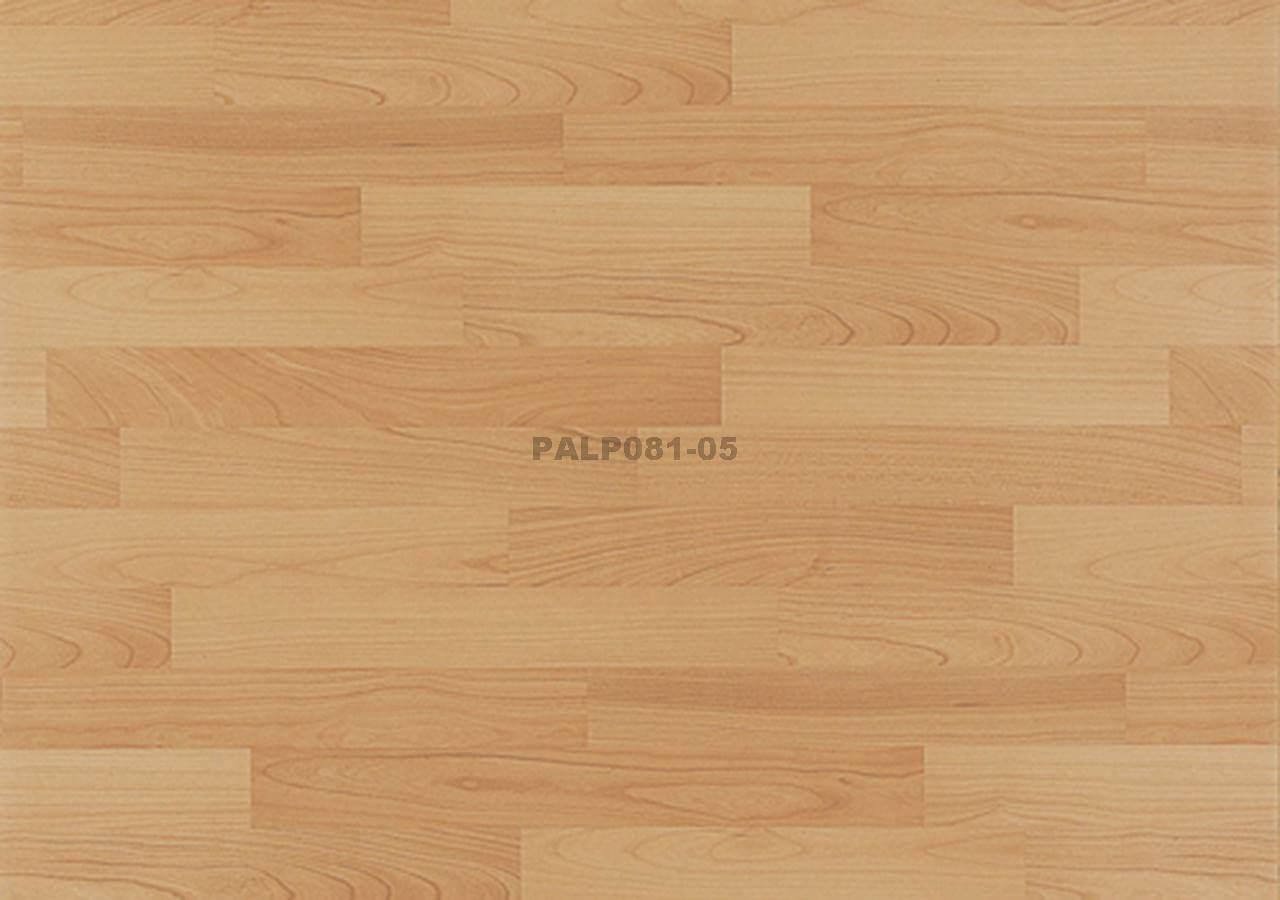 PALP081-05