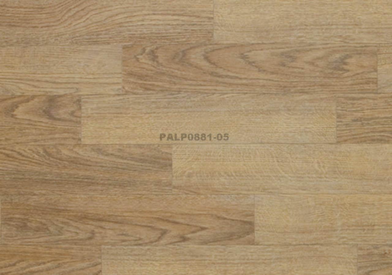 PALP0881-05