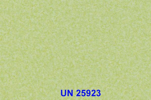 UN 25923